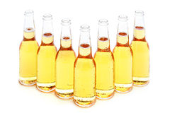 Beer bottles group isolated. Beer bottles group of 7 with water drops isolated on white Royalty Free Stock Photography