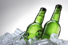 Beer bottles on ice Stock Photography