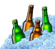 Beer bottles on ice Royalty Free Stock Photography