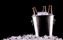 Beer bottles in ice bucket Royalty Free Stock Photos