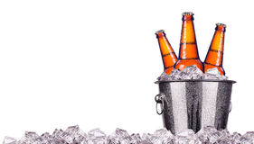 Beer bottles in ice bucket isolated. On white Stock Photos