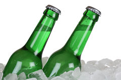 Beer bottles on ice Royalty Free Stock Images