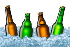 Beer bottles on ice Royalty Free Stock Image