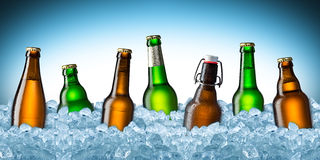 Beer bottles on ice Stock Photos
