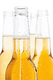 Beer bottles isolated. Beer bottles closeup - wet and isolated on white Stock Photos