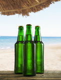 Beer bottles on tropical beach Royalty Free Stock Images