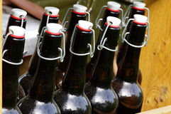 Beer bottles vintage Royalty Free Stock Images