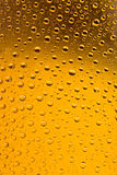Beer bottles with water droplets background Stock Photos