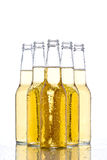 Beer bottles on white Royalty Free Stock Image