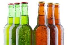 Beer bottles  on white background Stock Photo