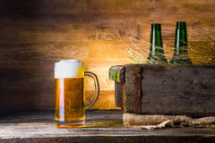 Beer in a box Stock Image