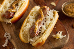 Beer Bratwurst with Sauerkraut Stock Image