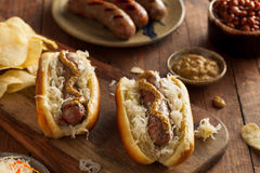 Beer Bratwurst with Sauerkraut. And Spicy Mustard Stock Images