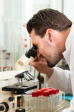 Beer Brewer in food laboratory examining Stock Photo