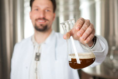 Beer brewer in his brewery examining Royalty Free Stock Photo