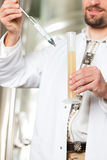 Beer brewer in his brewery examining stock images