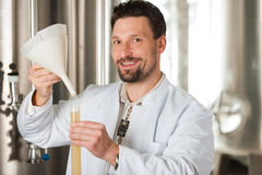 Beer brewer in his brewery examining Stock Photos