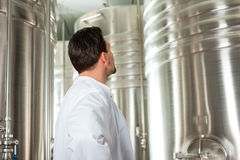 Beer brewer in his brewery Royalty Free Stock Photos