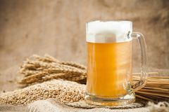 Beer. Brewery Hop Malt Ingredient Raw Material Royalty Free Stock Images