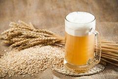 Beer. Brewery Hop Malt Ingredient Raw Material Royalty Free Stock Photo