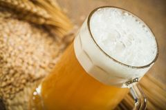 Beer. Brewery Hop Malt Ingredient Raw Material Royalty Free Stock Photography