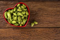 Beer brewing ingredients Hop cones in red heart bowl on wooden background. Beer brewery concept. Beer brewing ingredients Hop cones in red heart bowl on wooden Royalty Free Stock Photo