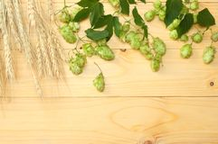 Beer brewing ingredients Hop cones and wheat ears on light wooden table. Beer brewery concept. Beer background. Top view. With copy space stock images