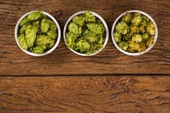 Beer brewing ingredients Hop cones in white bowl on wooden background. Beer brewery concept. Beer brewing ingredients Hop cones in wooden bowl and wheat ears on Stock Image