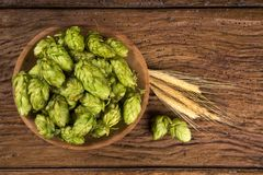 Beer brewing ingredients Hop cones in wooden bowl and wheat ears on wooden background. Beer brewery concept. Beer brewing ingredients Hop cones in wooden bowl Stock Photography
