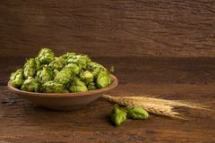 Beer brewing ingredients Hop cones in wooden bowl and wheat ears on wooden background. Beer brewery concept. Beer brewing ingredients Hop cones in wooden bowl Royalty Free Stock Photo
