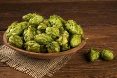 Beer brewing ingredients Hop cones in wooden bowl and wheat ears on wooden background. Beer brewery concept. Beer brewing ingredients Hop cones in wooden bowl Royalty Free Stock Images