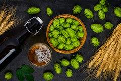 Beer Brewing Ingredients. Hops and Wheat Stock Photo