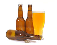 Glass of cold beer with several brown lager pils bottles isolated on white background Royalty Free Stock Photo