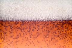 Beer bubble. Stock Photography
