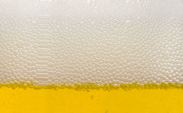 Beer bubbles. Macro shot of beer bubbles Royalty Free Stock Image