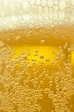 Beer bubbles. Close up shot of beer bubbles Stock Photos
