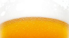 beer bubbles стоковые изображения rf