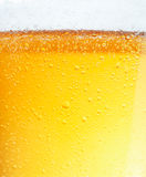 Beer with Bubbles. Close-up picture of a beer with the foam in the top and bubbles Stock Photos