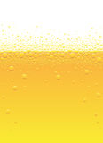 Beer bubbles Stock Image