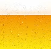 Beer Bubbles background Stock Image