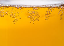 Beer bubbles Royalty Free Stock Images
