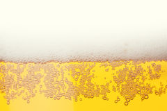 Beer bubbles Stock Images