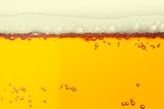 Beer bubbles Stock Photos