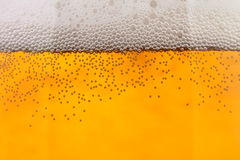 Beer bubbles closeup Royalty Free Stock Photos