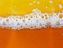 Beer bubbles closeup in golden colors Stock Images