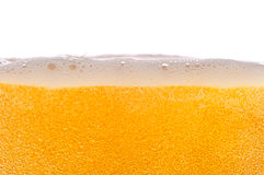 Beer bubbles. Royalty Free Stock Photography