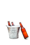 Beer Bucket with Leaning beer Stock Images