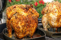 Beer Can Chicken Royalty Free Stock Images