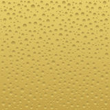 Beer or cheese background Royalty Free Stock Photography