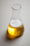 Beer and chemistry Royalty Free Stock Photos